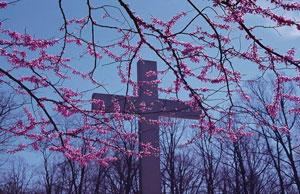 spring-cross
