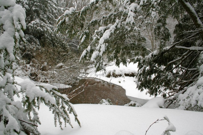 snowystream2web