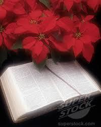 Christmas Bibles 3